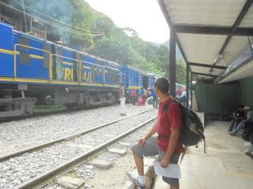 Trem que leva da Hidrelétrica até Águas Calientes