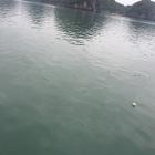Muita sujeira em Halong Bay