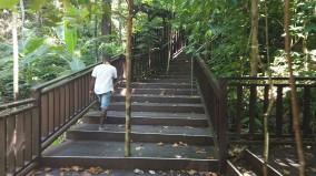 Escada bem estruturada para chegar no topo