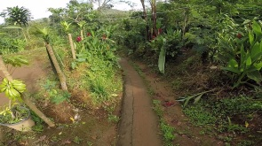 Entrada da trilha da Banyumala Twin Waterfalls